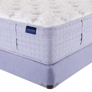 Atlantic Dream Plush Mattress by Aireloom