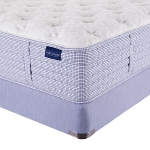 Clearview Luxury Firm Mattress by Aireloom