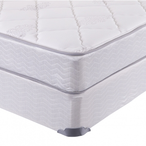 Darlington Plush/Firm Mattress by Sleep & Health