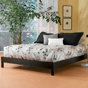 Murray Platform Bed by Fashion Bed Group in Black