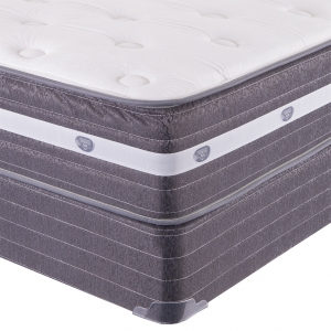 Savannah Plush Mattress by Spring Air