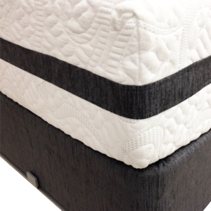 Chesapeake Plush Memory Foam Mattress by Serta