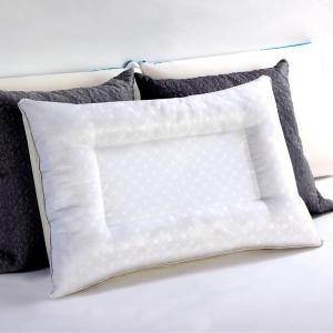 Sealy Reversible Memory Foam Pillow with Gel