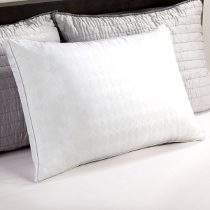 Sealy Comfort Cover and Memory Foam Core Pillow
